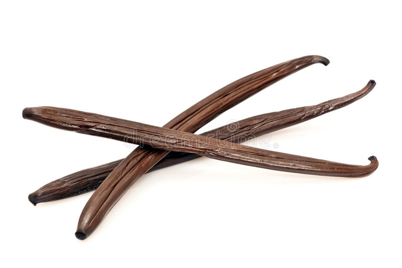 Vanilla pods. Three fresh vanilla pods on a white background stock photo