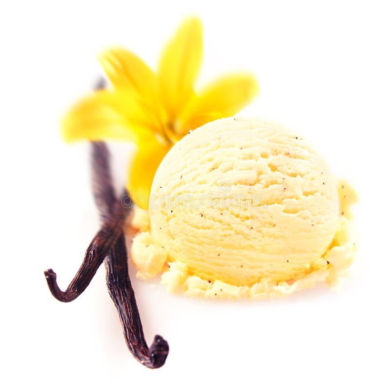 Vanilla pods with icecream royalty free stock photography