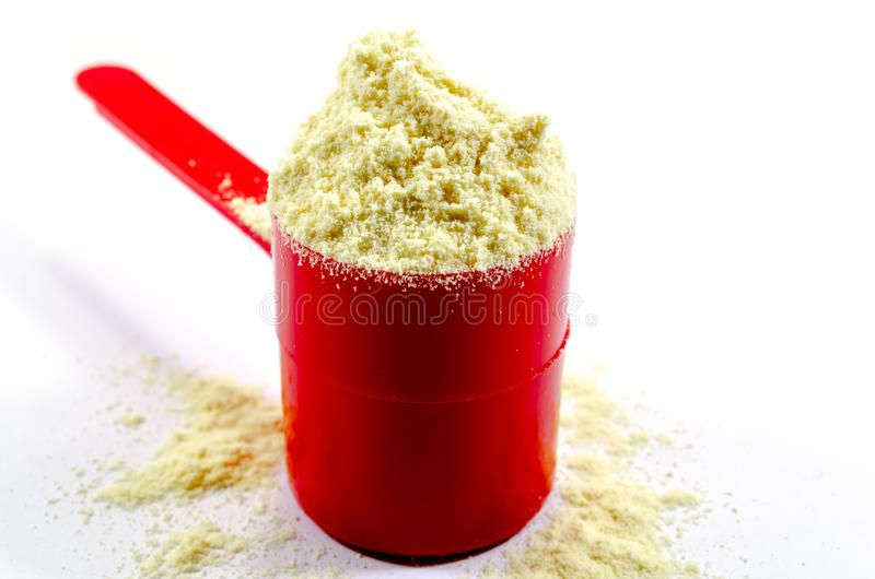 Vanilla Protein. An overflowing scoop of vanilla whey protein royalty free stock photography