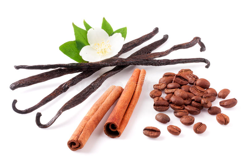 Vanilla sticks and cinnamon with coffee beans and flower isolated on white background stock photo