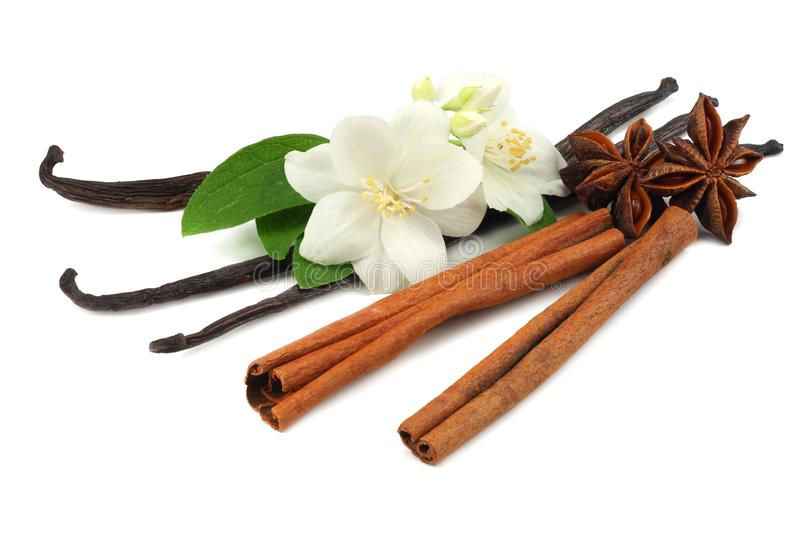 Vanilla sticks with white flower isolated on white background royalty free stock images