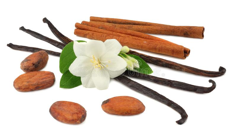 Vanilla sticks with white flower isolated on white background royalty free stock photography