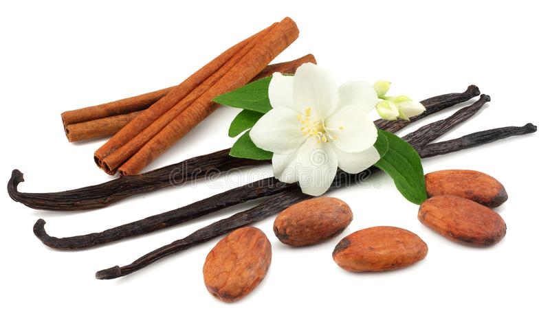 Vanilla sticks with white flower isolated on white background stock images