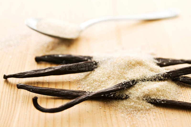 Download Vanilla sugar stock image. Image of flavored, herb, flavoring - 25288257