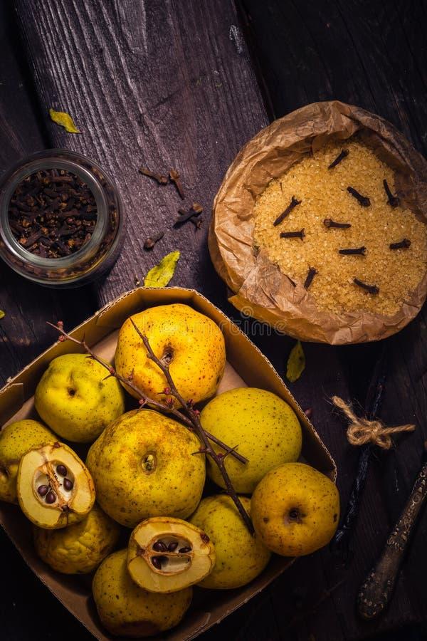 Vanille W de clous de girofle de sucre de coing de brindilles de fruits de teintures d'ingrédients photo stock