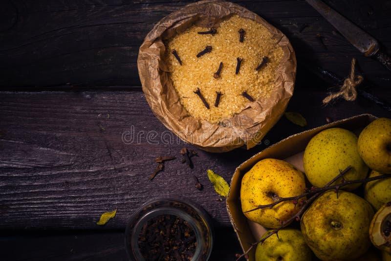 Vanille W de clous de girofle de sucre de coing de brindilles de fruits de teintures d'ingrédients photographie stock libre de droits