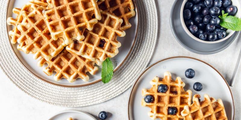 Vanille-wafels met chocoladeklontjes royalty-vrije stock fotografie
