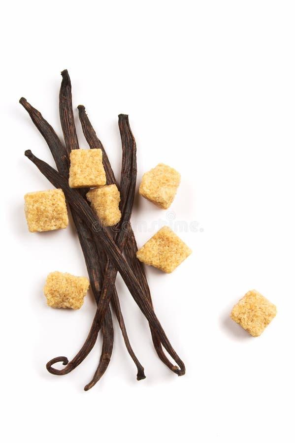 Vanillebohnen und brauner Zucker lizenzfreies stockfoto