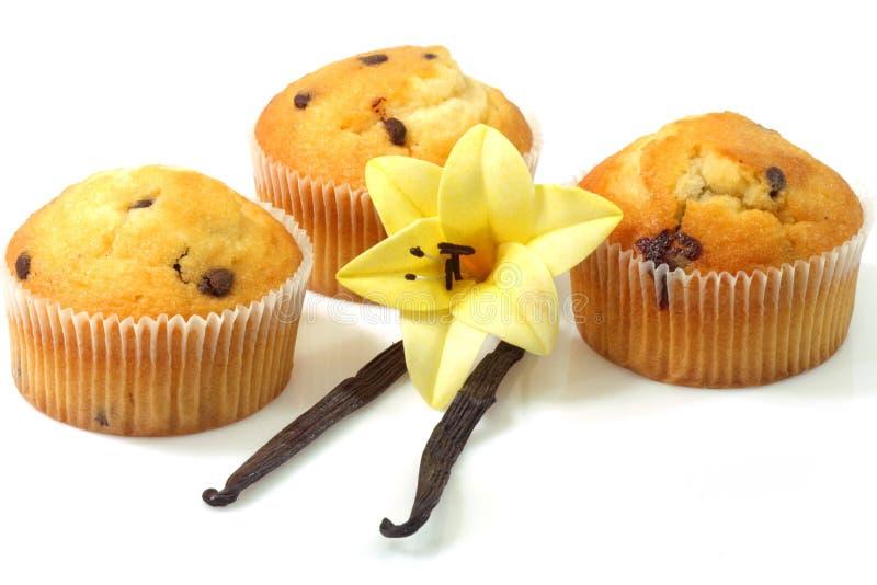 Vanillemuffins stockfoto