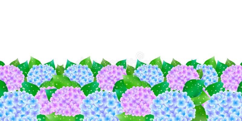 Vanliga hortensian blommar flaggan för den regniga säsongen royaltyfri illustrationer