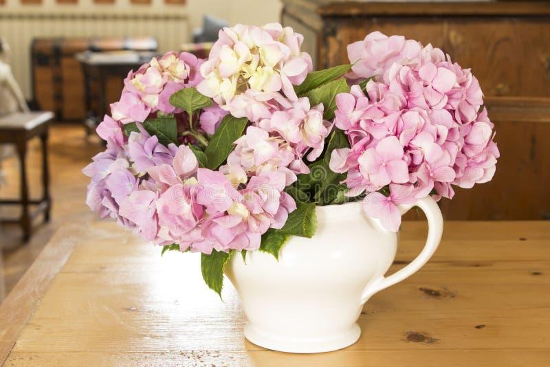Vanliga hortensian blommar på en tabell i vardagsrummet royaltyfri foto