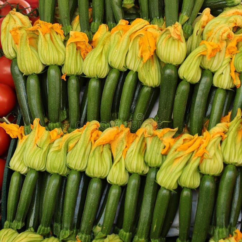 Vanliga zucchinier med gula blommor fotografering för bildbyråer