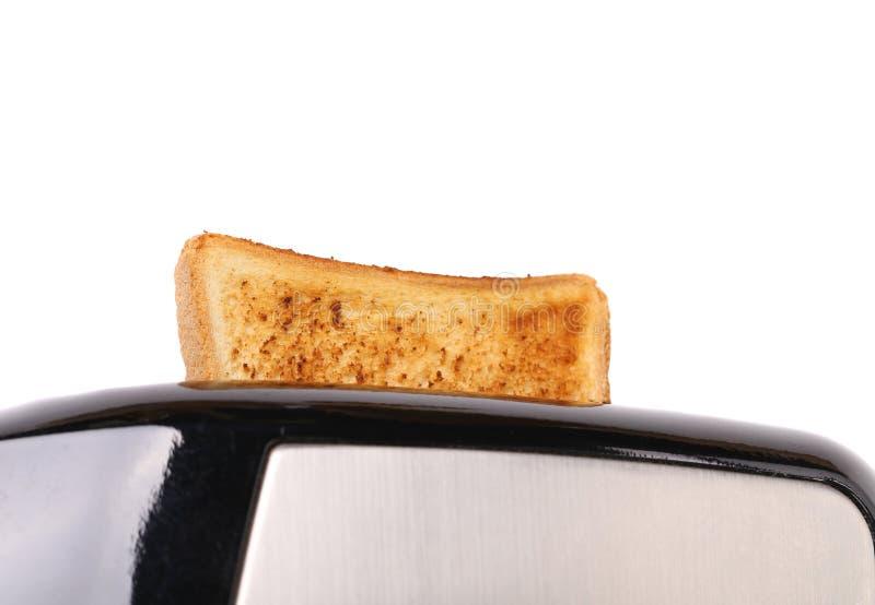 Vanligt vitt rostat bröd som poppar upp från en brödrost arkivbilder