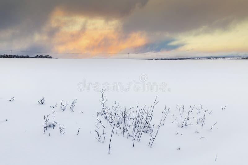 Vanligt vitt vinterlandskap med solnedgångmoln fotografering för bildbyråer
