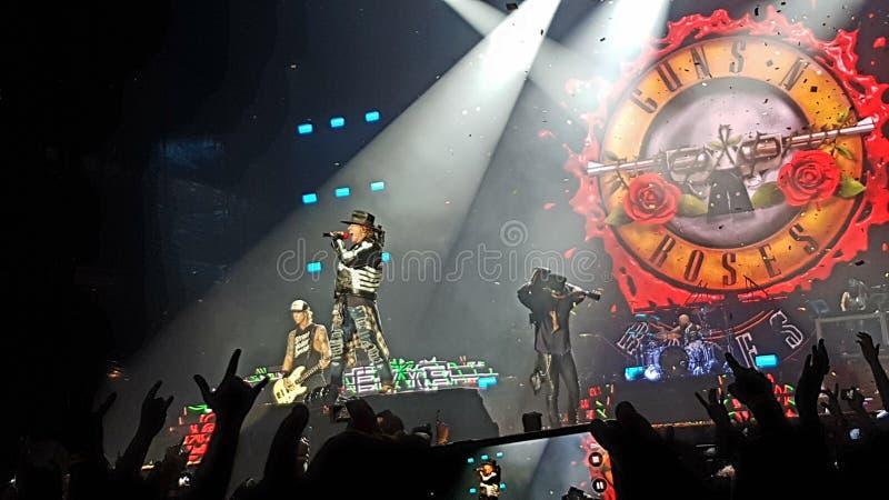 Vapen n' Rosor i konsert royaltyfri bild