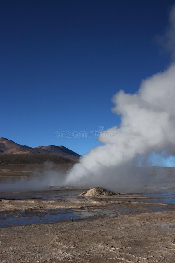 Vapeur de geyser d'EL Tatio image libre de droits