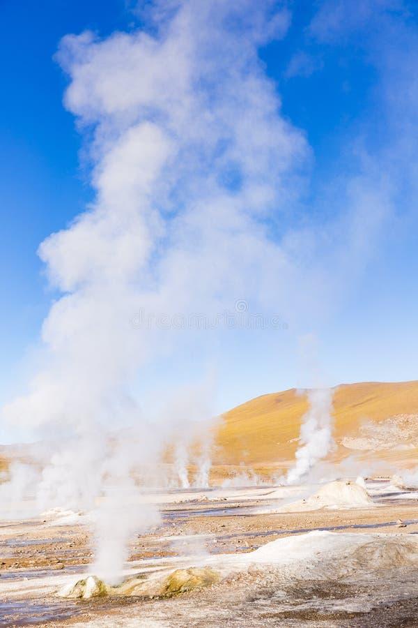 Vapeur des geysers dans la réserve nationale de flamenco de visibilité directe images stock