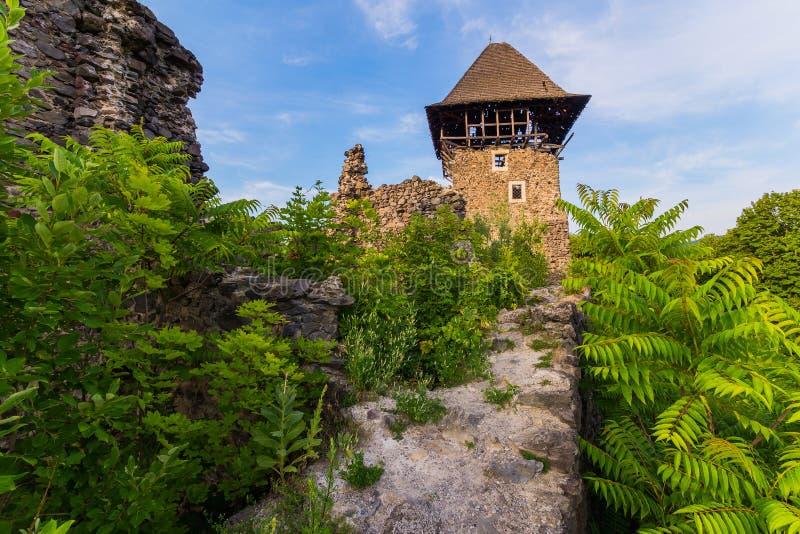 Vapnet av väggen av en forntida fästning med ett torn med ett fortfarande bevarat tak på antingen sida som är bevuxen med arkivbild