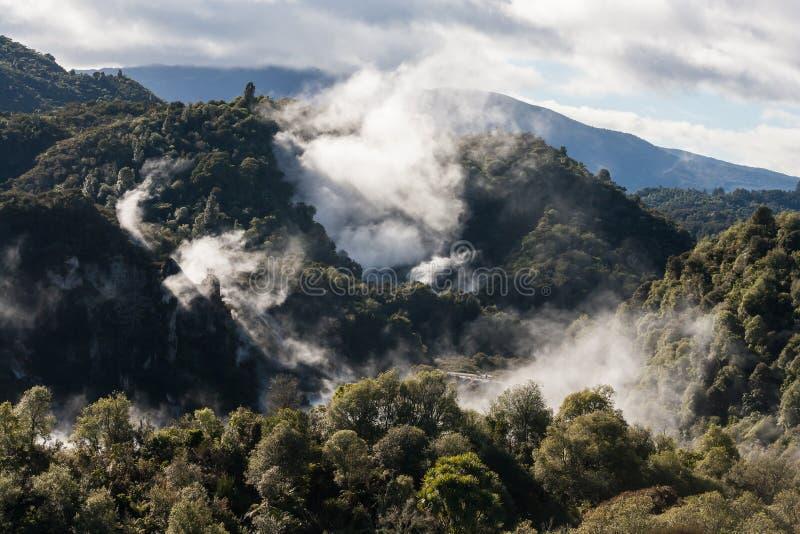 Vapor vulcânico no vale térmico em Rotorua fotos de stock