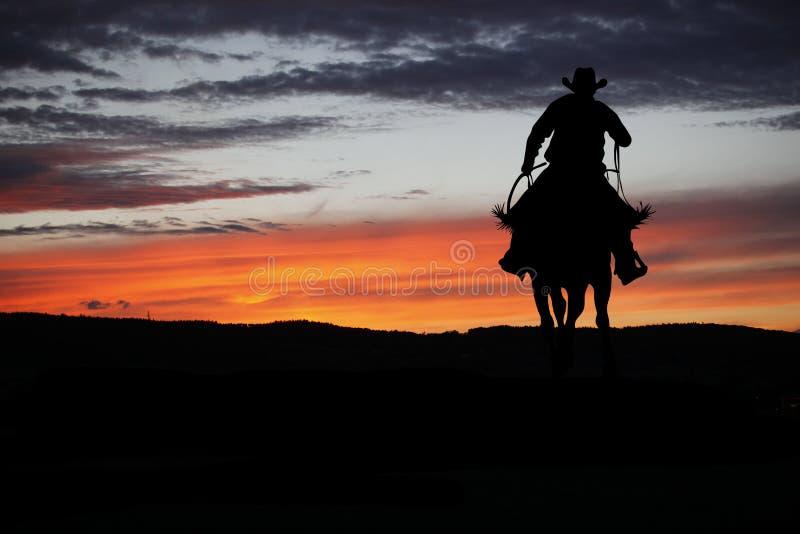 Vaqueiro em um cavalo fotografia de stock