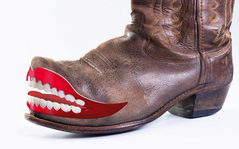 Vaqueiro louco Boots foto de stock