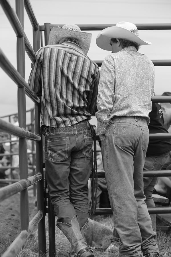 Vaqueiros antes do rodeio imagem de stock royalty free