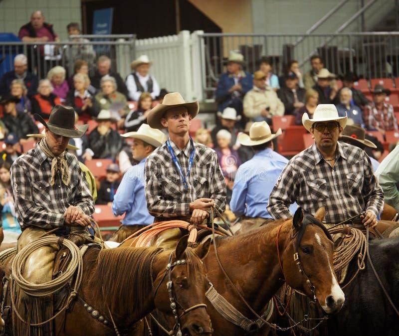 Vaqueiros do rodeio a cavalo fotografia de stock