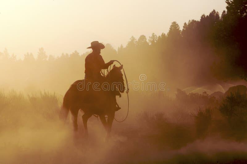 Vaquero en el polvo foto de archivo libre de regalías
