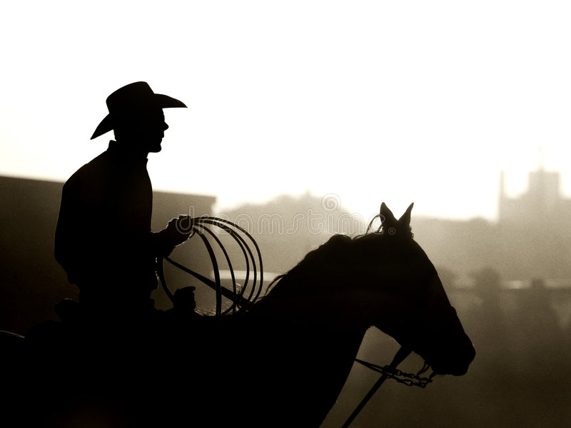 Vaquero en el rodeo fotografía de archivo