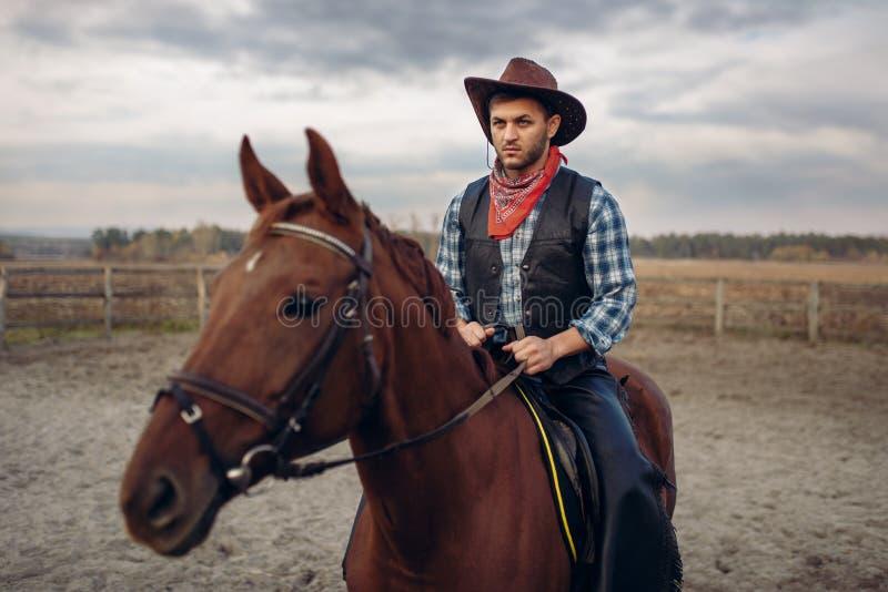 Vaquero en la ropa de cuero que monta un caballo en granja imagen de archivo