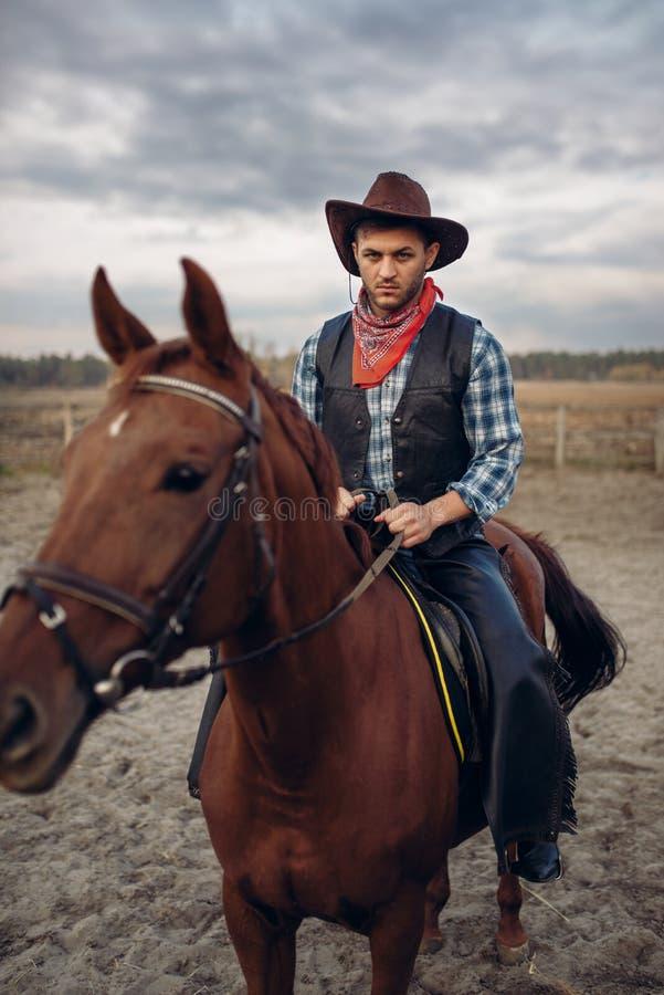 Vaquero en la ropa de cuero que monta un caballo en granja foto de archivo libre de regalías