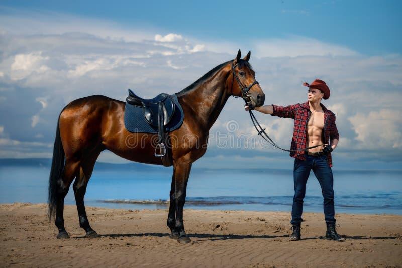 Vaquero hermoso y caballo del hombre machista en el fondo del cielo y del agua foto de archivo
