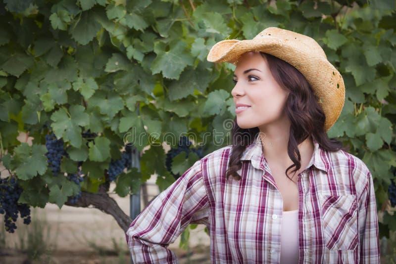 Vaquero que lleva Hat del retrato joven hermoso de la hembra adulta en viñedo fotos de archivo