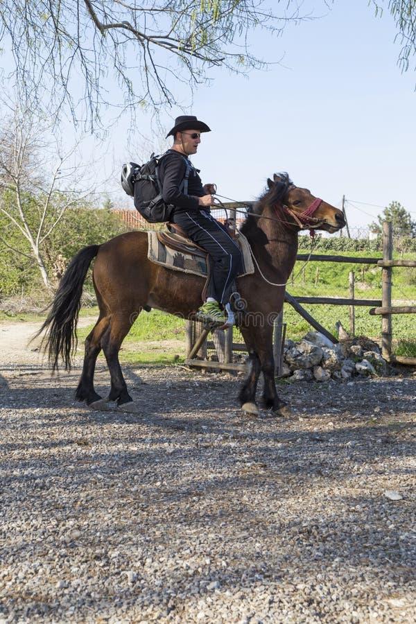 Vaquero que monta su caballo imágenes de archivo libres de regalías
