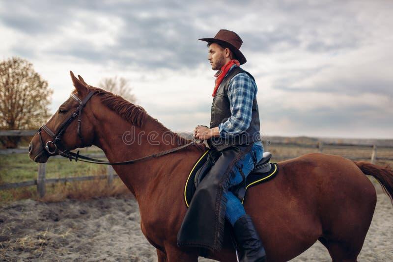 Vaquero que monta un caballo en la granja de Tejas foto de archivo