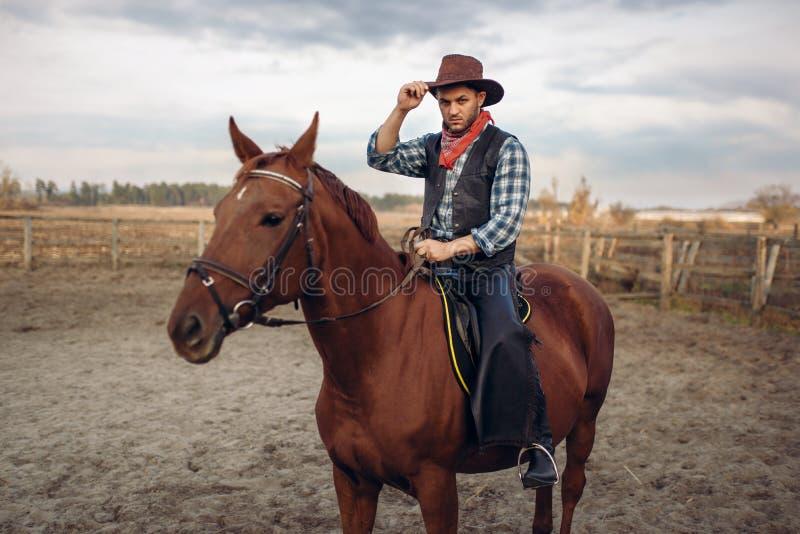 Vaquero que monta un caballo en un rancho, occidental imagen de archivo