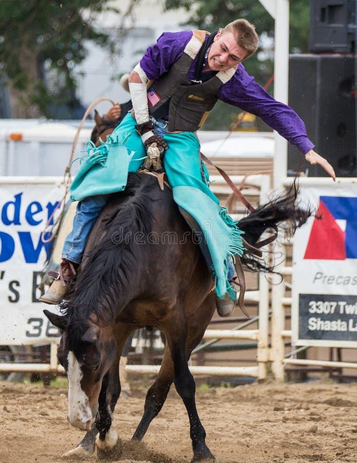 Vaquero Saddle Bronc Rodeo fotografía de archivo libre de regalías