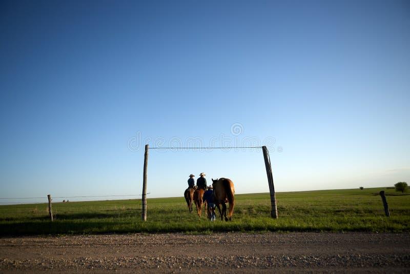 Vaqueros que dirigen hacia fuera sobre la gama en la tarde fotografía de archivo