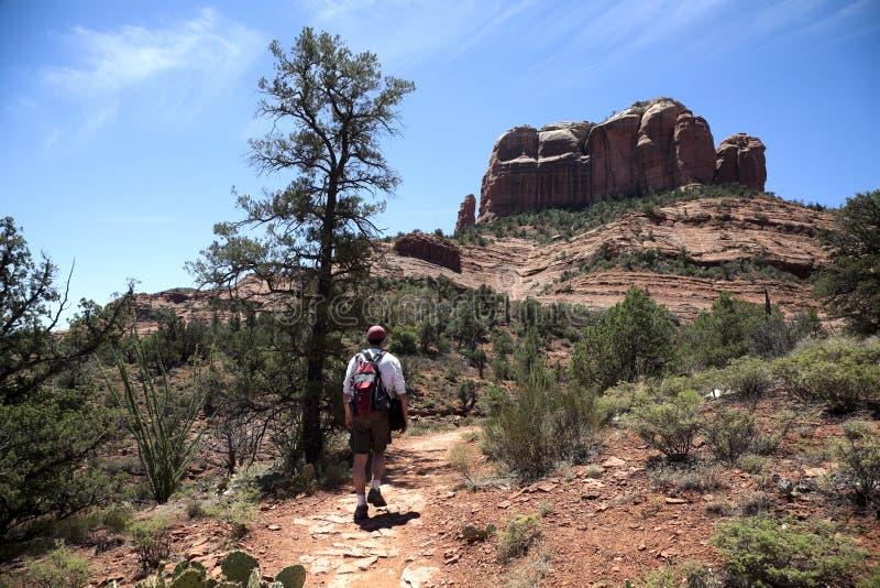 Varón adulto que va de excursión en el desierto imagen de archivo