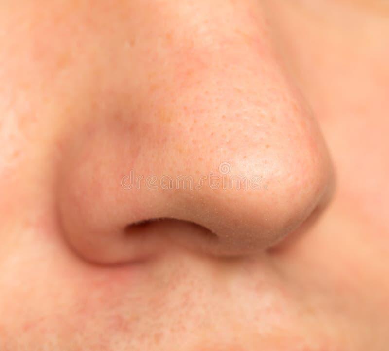 Varón de la nariz Macro imagenes de archivo