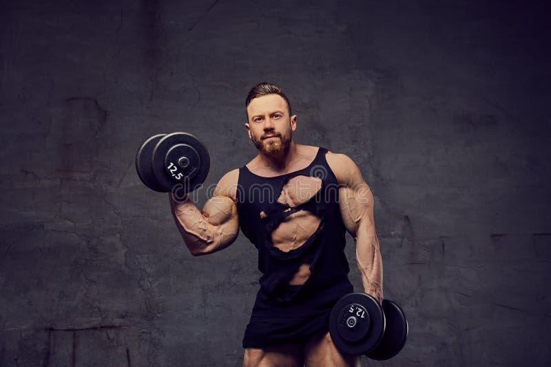 Varón muscular, barbudo que hace entrenamientos del bíceps con pesas de gimnasia imágenes de archivo libres de regalías