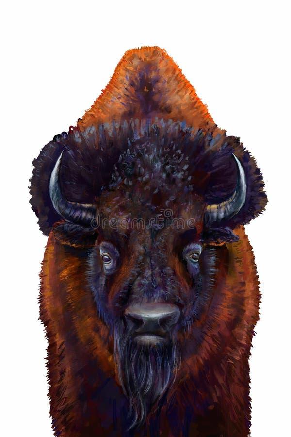 Varón salvaje del bisonte stock de ilustración