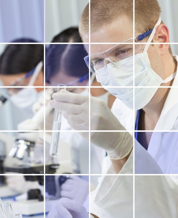 Varón y investigadores científicos de sexo femenino en laboratorio fotos de archivo libres de regalías
