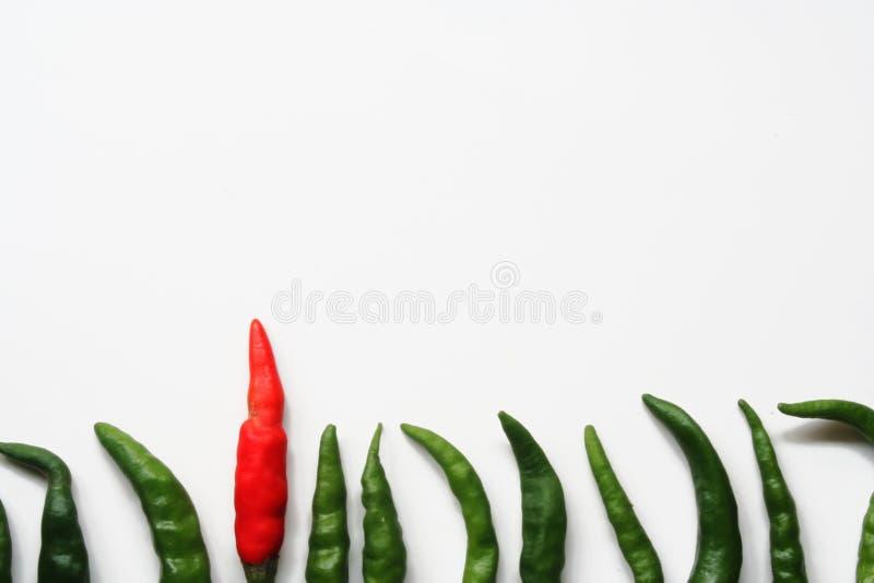 Download Var Utmaningen Som är Olik Till Fotografering för Bildbyråer - Bild av india, matlagning: 977097