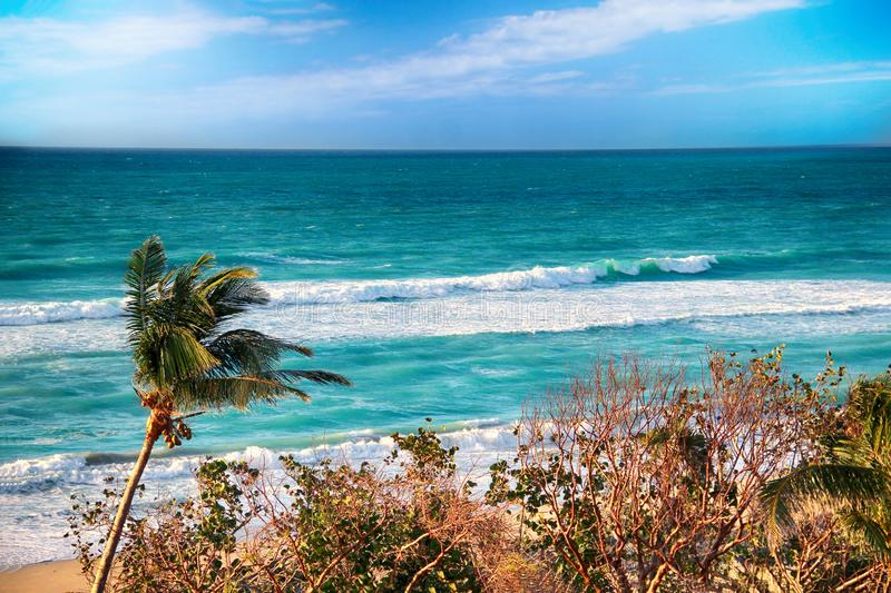 Varadero beach with tyrquis sea and ocean. There is a lot of green palms. Blue sky is in the background. It is beautiful natural. Bachground. There is summer royalty free stock image