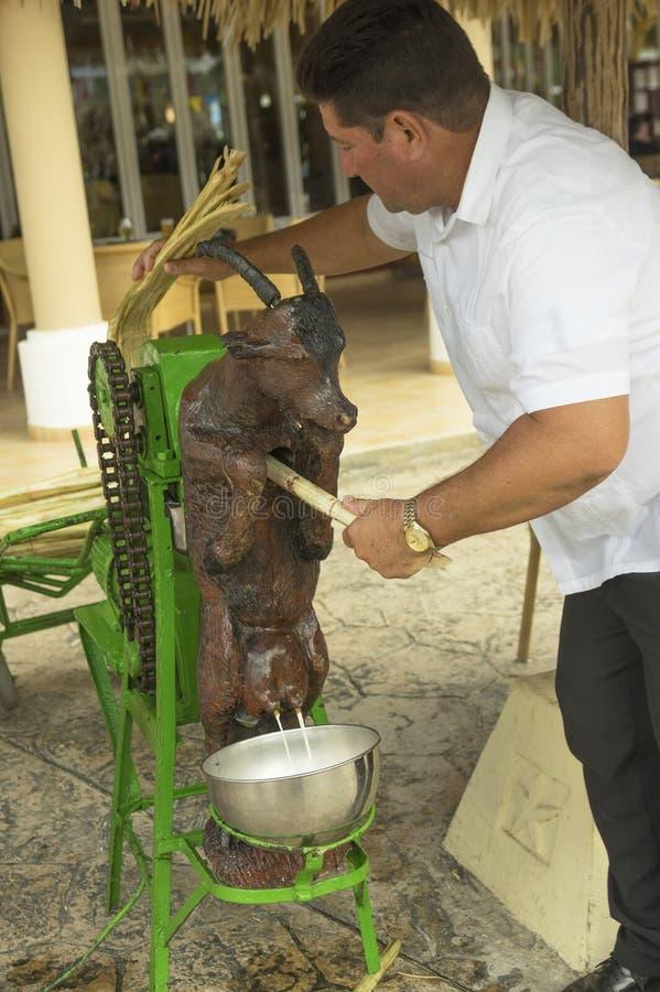 VARADERO, CUBA - JANUARY 05, 2018: The man squeezes the sugar cane juice at the Iberostar Varadero Hotel in Cuba royalty free stock photos