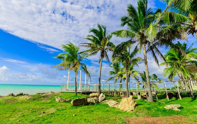 Gorgeous inviting view from tropical garden on Cuban Varadero beach, tranquil turquoise tender ocean against blue sky background royalty free stock images