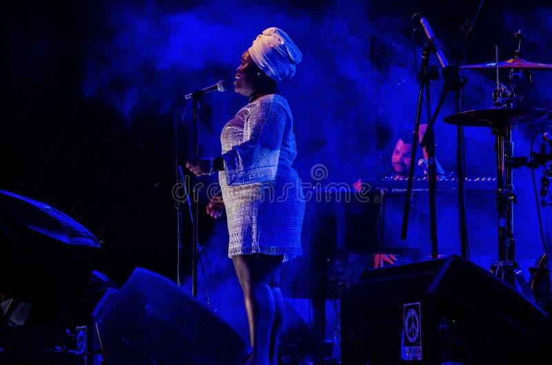 Varadero Josone Jazz & Zoonsfestival 7 royalty-vrije stock foto's