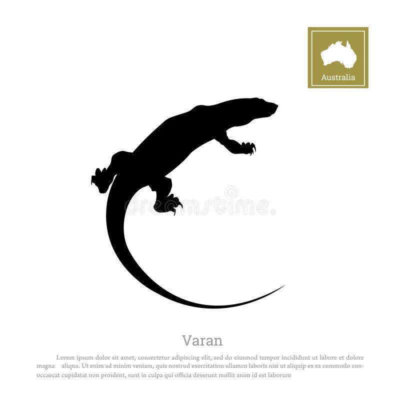 varan黑剪影在白色背景的 澳大利亚的动物 库存例证