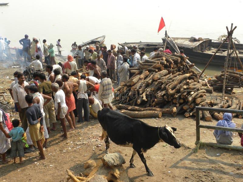 Varanasi, uttar pradesh, Inde - 1er novembre 2009 au sol d'incinération dans Manikarnika Ghat photographie stock